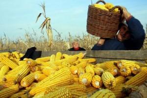 poljoprivreda-seljak2-s