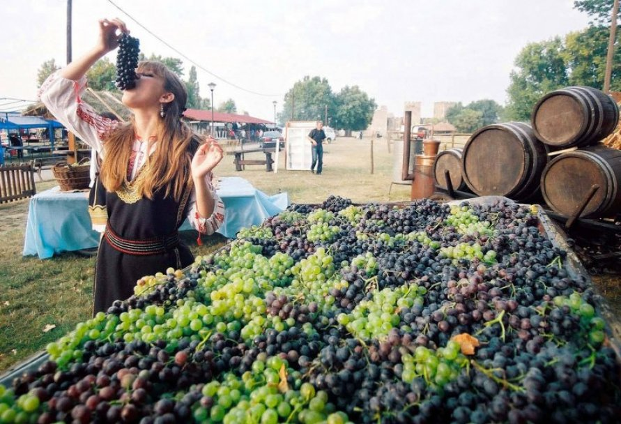 Vršac: završeni Pedesetosmi dani berbe grožđa