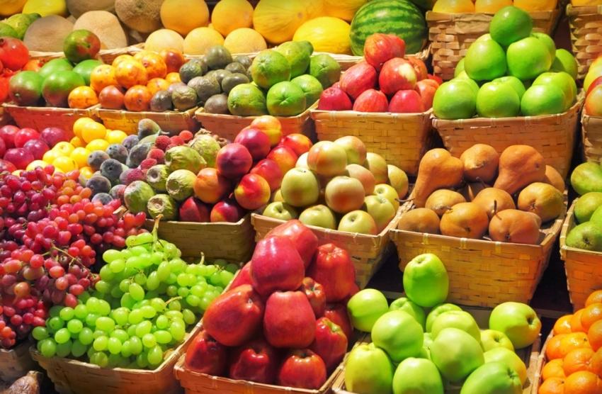 Sastanak u PKS: ruski trgovci posetili 40 srpskih kompanija za proizvodnju voća