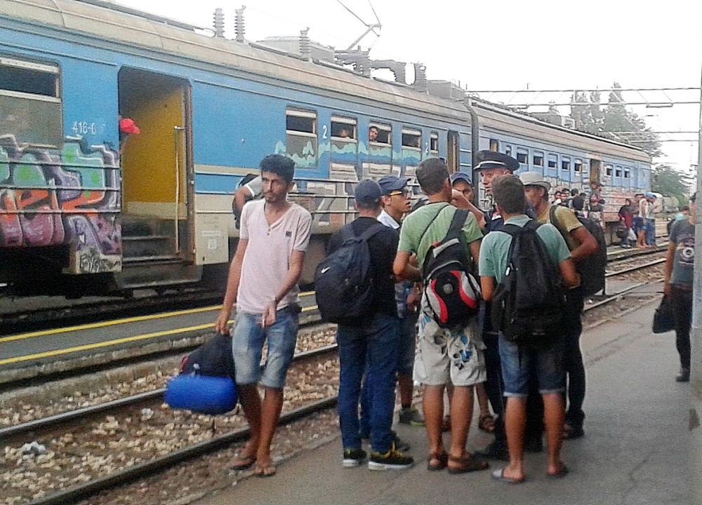 Subotica: Sprečeno krijumčarenje 44 migranta