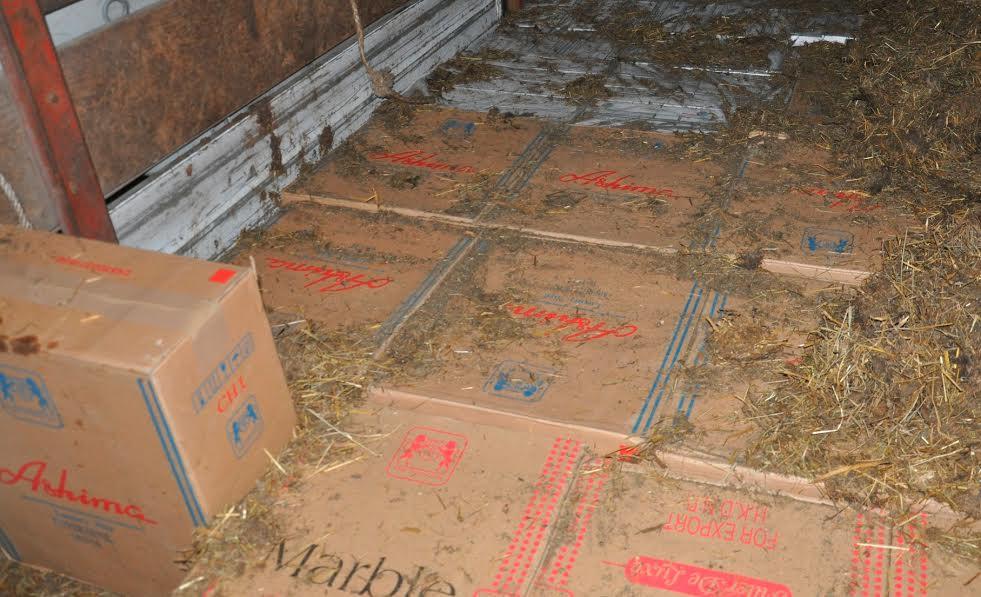 Novopazarac švercovao 24.000 paklica cigareta