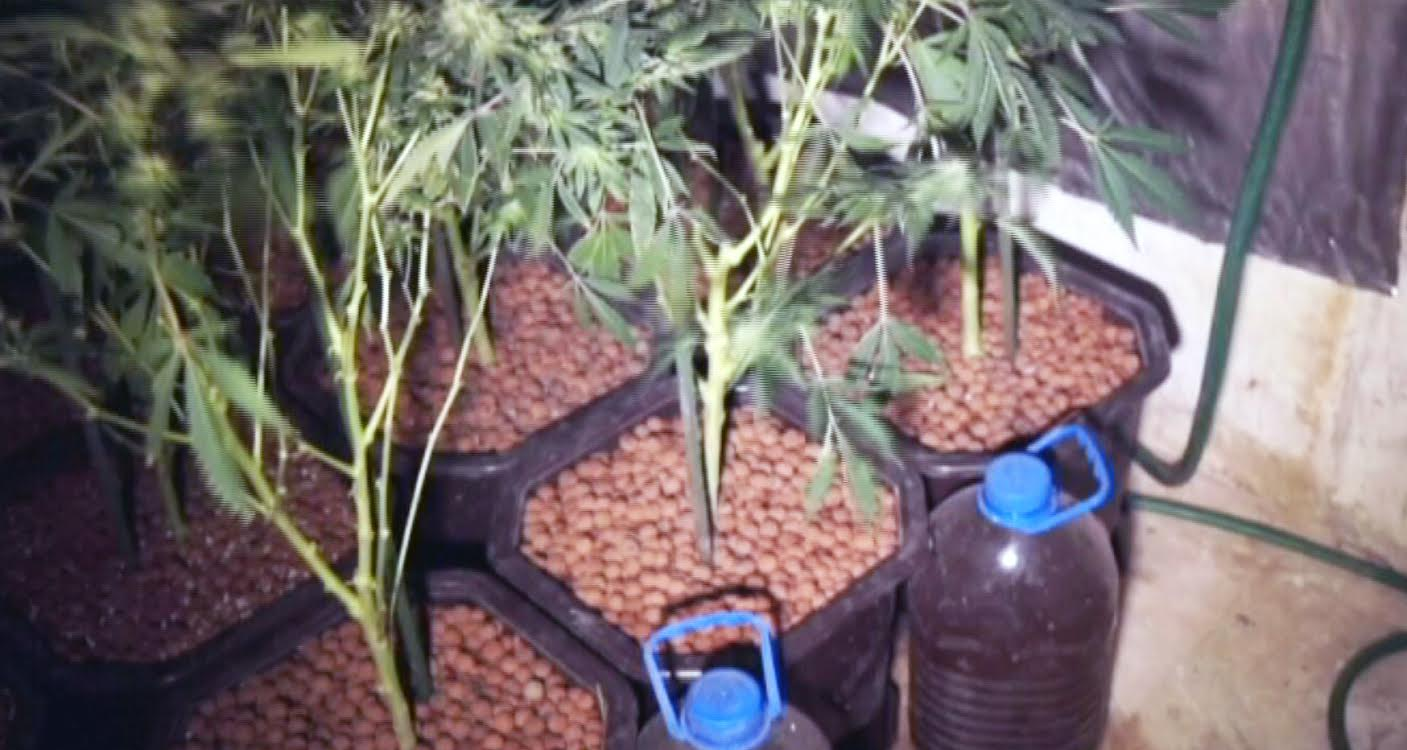 Zaplenjena droga vredna 300.000 dinara