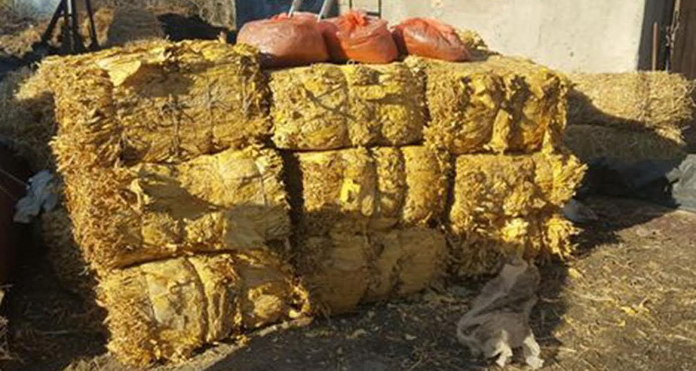 Ruma: policija zaplenila preku tonu duvana