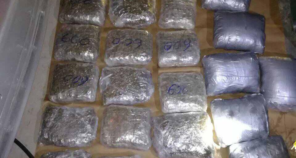 Leskovac: uhapšeni zbog 13,5 kilograma marihuane!