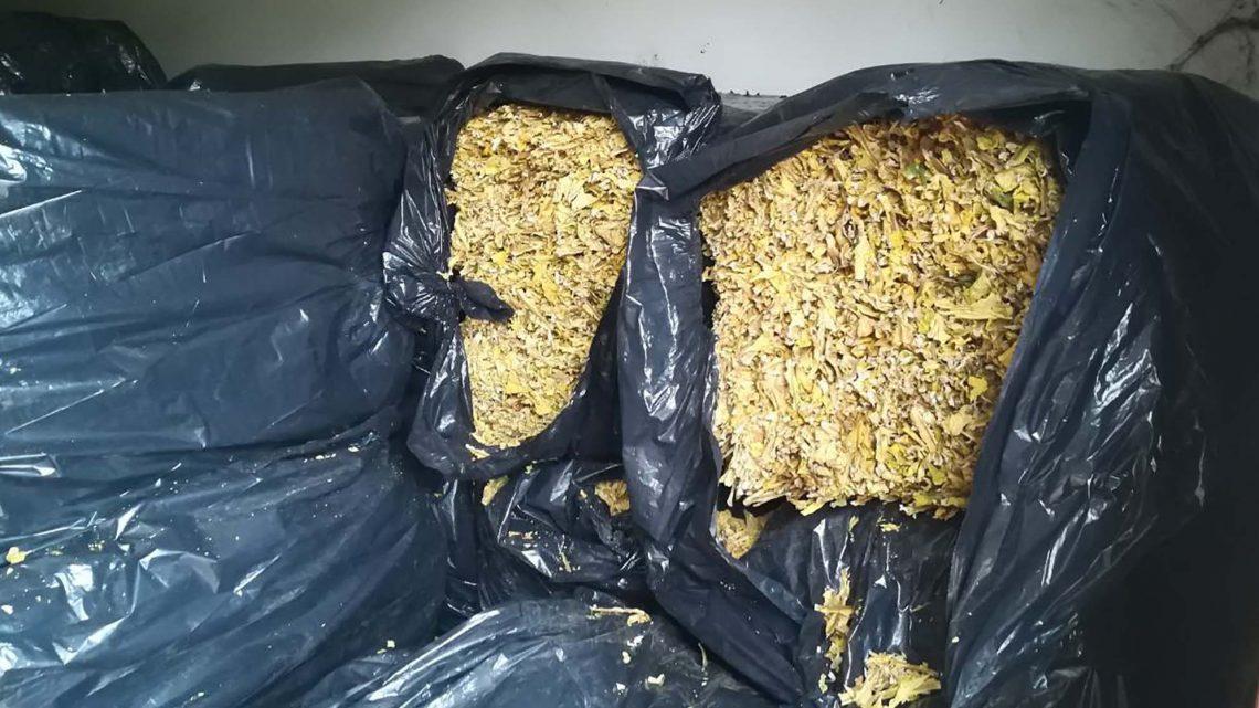 ŠVERC: Kod Šimanovca policija zaplenila tonu i 800 kilograma duvana