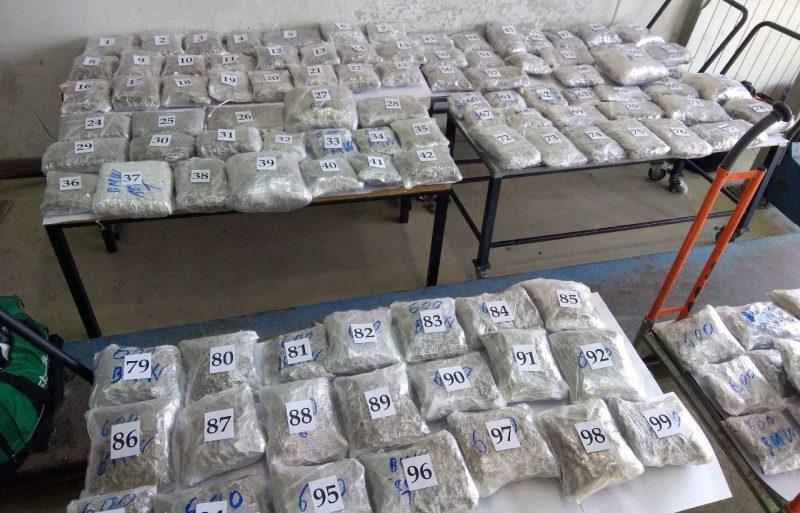 Horgoš: Šveđanin švercovao 100 kilograma marihuane
