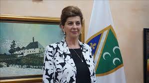 BNV: Zahtev vladi – 28 septembar praznik Bošnjaka