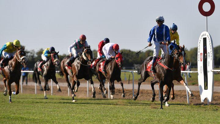 VOJSKA SRBIJE – KARAĐORĐEVO: Povratak konjičkog sporta