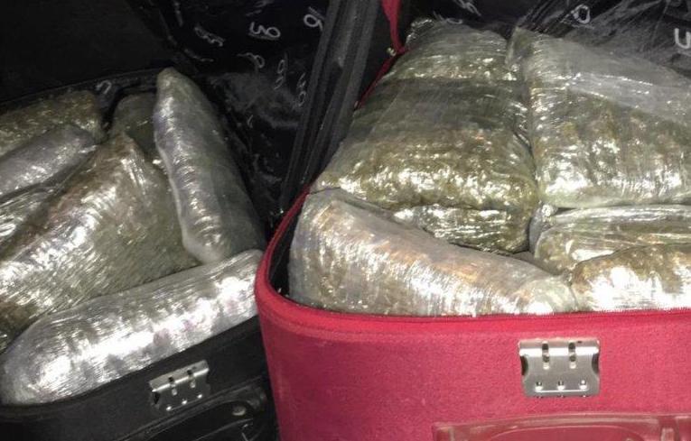 MUP – BEOGRAD: Zaplenjeno 17 kilograma marihuane!