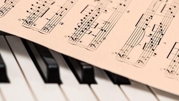 VELIKO PRIZNANJE: Srpsko društvo za muzičku teoriju primljeno u Evropsku mrežu za teoriju i analizu muzike