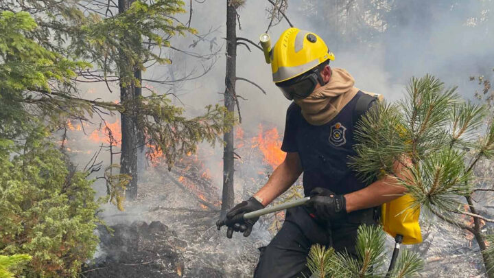 Пожар код Нове Вароши за сада под контролом