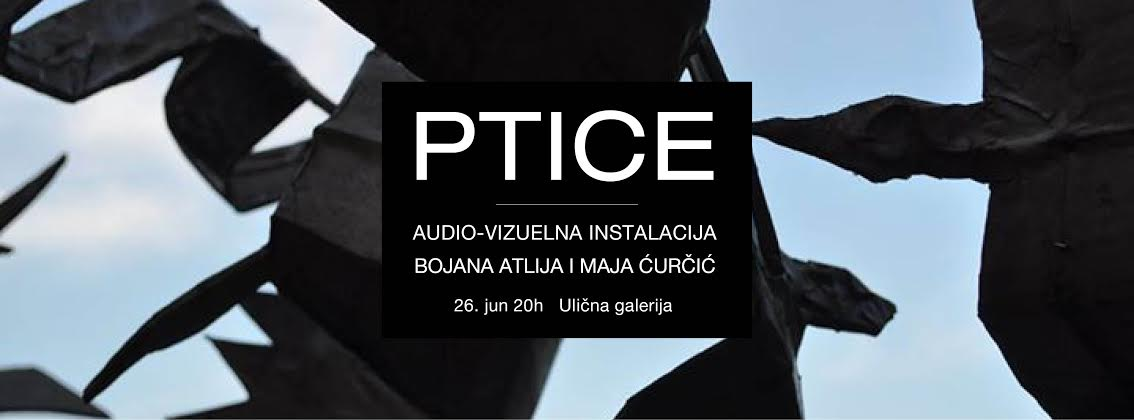 """ULIČNA GALERIJA: AUDIO – VIZUELNA INSTALACIJA """"PTICE"""", BOJANE ATLIJE I MAJE ĆURČIĆ"""